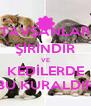 TAVŞANLAR ŞİRİNDİR VE KEDİLERDE BU KURALDIR - Personalised Poster A4 size