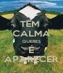 TEM  CALMA QUERES É APARECER - Personalised Poster A4 size