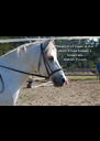 The wind of heaven is that  which blows between a  horse's ears. Arabian Proverb - Personalised Poster A4 size