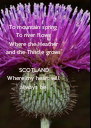 To mountain spring  To river flows Where the Heather and the Thistle grows  SCOTLAND Where my heart will always be - Personalised Poster A4 size