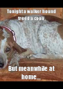 Tonight a walker hound treed a coon But meanwhile at home... - Personalised Poster A4 size