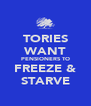 TORIES WANT PENSIONERS TO FREEZE & STARVE - Personalised Poster A4 size