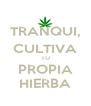 TRANQUI, CULTIVA TU PROPIA HIERBA - Personalised Poster A4 size
