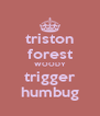 triston forest WOODY trigger humbug - Personalised Poster A4 size