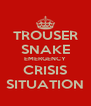 TROUSER SNAKE EMERGENCY CRISIS SITUATION - Personalised Poster A4 size