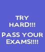 TRY HARD!!!  PASS YOUR EXAMS!!!! - Personalised Poster A4 size
