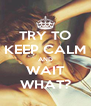 TRY TO KEEP CALM AND WAIT WHAT? - Personalised Poster A4 size