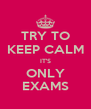 TRY TO KEEP CALM IT'S ONLY EXAMS - Personalised Poster A4 size