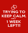 TRYING TO KEEP CALM. ONLY  1 WEEK LEFT!!! - Personalised Poster A4 size