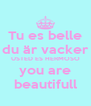 Tu es belle du är vacker USTED ES HERMOSO you are beautifull - Personalised Poster A4 size