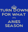 TURN DOWN FOR WHAT IT'S ARIES SEASON - Personalised Poster A4 size
