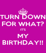 TURN DOWN FOR WHAT? IT'S MY BIRTHDAY!! - Personalised Poster A4 size