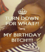TURN DOWN  FOR WHAT?! IT'S MY BIRTHDAY BITCH!!!! - Personalised Poster A4 size