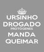 URSINHO DROGADO PROTÓGENES MANDA QUEIMAR - Personalised Poster A4 size