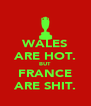 WALES ARE HOT. BUT FRANCE ARE SHIT. - Personalised Poster A4 size