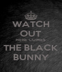 WATCH OUT HERE COMES THE BLACK BUNNY - Personalised Poster A4 size