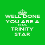 WELL DONE YOU ARE A TOTAL TRINITY STAR - Personalised Poster A4 size