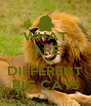 WHAT ARE THE  DIFFERENT BIG CATS - Personalised Poster A4 size