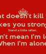 What doesn't kill you, Makes you stronger Stand a little taller, Doesn't mean I'm lonely When I'm alone. - Personalised Poster A4 size