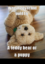 What if I never find out if I'm  A teddy bear or a puppy - Personalised Poster A4 size