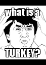 what is a TURKEY? - Personalised Poster A4 size