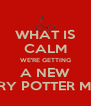 WHAT IS CALM WE'RE GETTING A NEW HARRY POTTER MOVIE - Personalised Poster A4 size