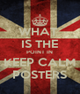WHAT  IS THE POINT IN  KEEP CALM  POSTERS - Personalised Poster A4 size