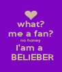 what? me a fan? no honey I'am a   BELIEBER - Personalised Poster A4 size
