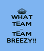 WHAT TEAM ... TEAM BREEZY!! - Personalised Poster A4 size