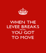 WHEN THE LEVEE BREAKS MAMA YOU GOT TO MOVE - Personalised Poster A4 size