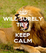 WILL SURELY TRY  TO KEEP CALM - Personalised Poster A4 size