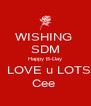 WISHING  SDM Happy B-Day   LOVE u LOTS Cee  - Personalised Poster A4 size