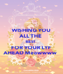 WISHING YOU ALL THE  BEST  FOR YOUR LYF AHEAD Meowwww  - Personalised Poster A4 size