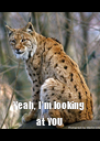 Yeah, I'm looking at YOU - Personalised Poster A4 size