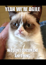 YEAH WE'RE AGILE WE DON'T DOCUMENT ANYTHING - Personalised Poster A4 size