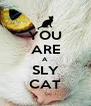 YOU ARE A SLY CAT - Personalised Poster A4 size