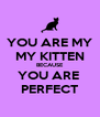 YOU ARE MY MY KITTEN BECAUSE YOU ARE  PERFECT - Personalised Poster A4 size