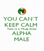 YOU CAN`T  KEEP CALM  THIS IS A TRUE IRISH ALPHA MALE - Personalised Poster A4 size