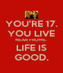 YOU'RE 17. YOU LIVE NEAR FROME. LIFE IS GOOD. - Personalised Poster A4 size