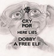 here lies dobby - photo #15