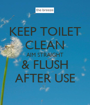 how to clean a toilet plunger after use