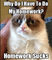 ideas about No Homework Binder on Pinterest   Homework     How to Do My Homework Quickly  a Tried and Tested Strategy