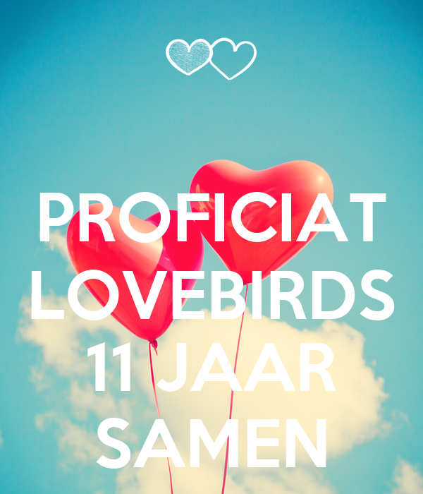 11 jaar samen PROFICIAT LOVEBIRDS 11 JAAR SAMEN Poster   Bianca   Keep Calm o Matic 11 jaar samen