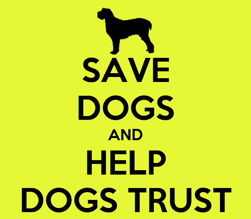 Dogs Trust Dogs For Sale