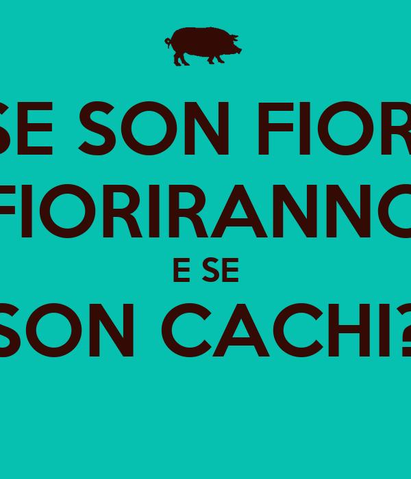 Se Son Fiori Fioriranno E Se Son Cachi Poster Alessandro Di Chiaro Keep Calm O Matic
