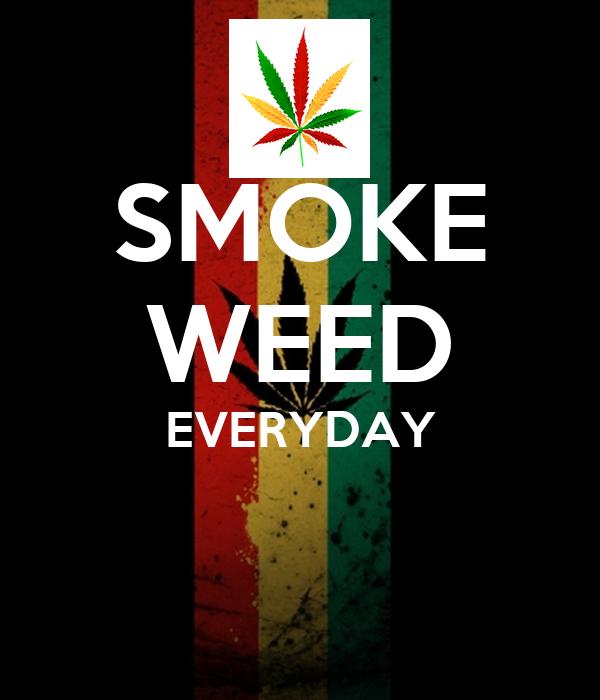 smoke weed everyday poster nuno keep calmomatic