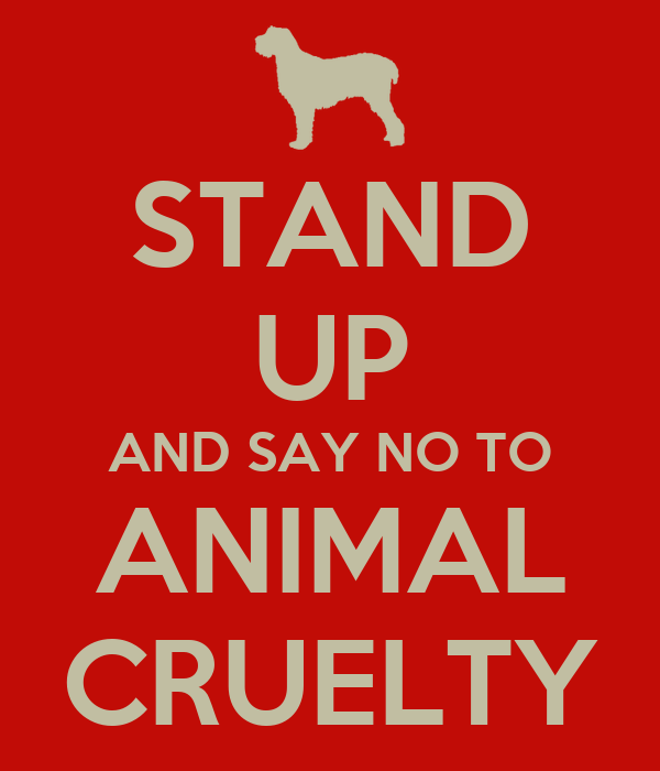 STAND UP AND SAY NO TO ANIMAL CRUELTY Poster   Chris ...