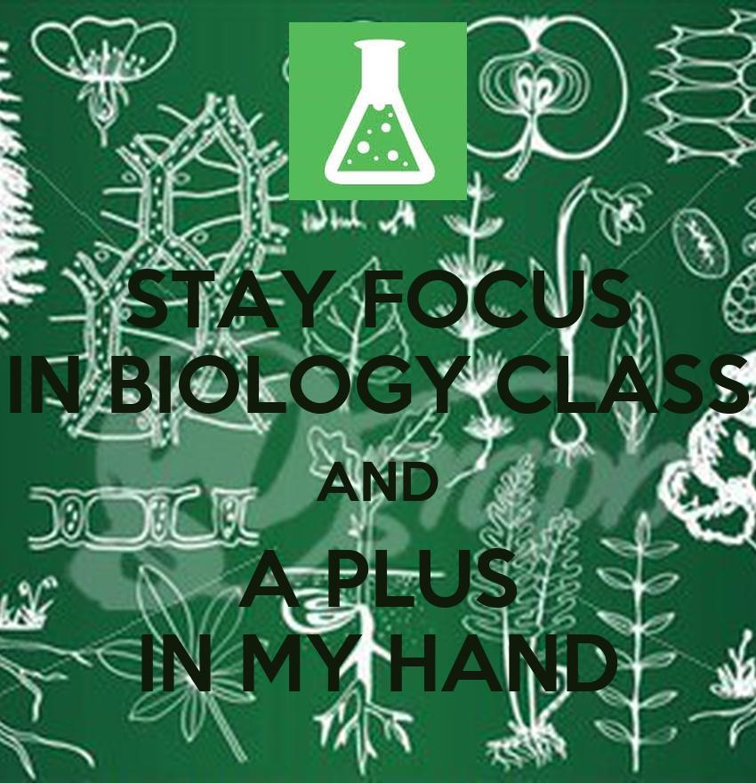 biology in focus prelim pdf