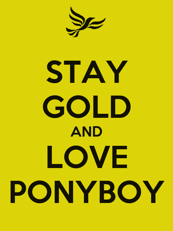 1000 images about stay gold for Stay gold ponyboy