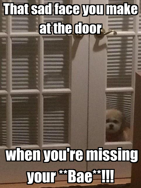 Missing Someone Gets Easier Every Day Pictures Photos: That Sad Face You Make At The Door When You're Missing